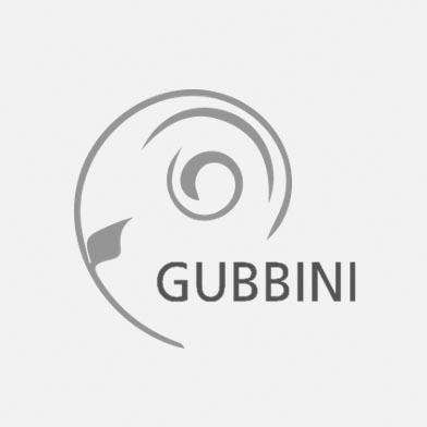 GUBBINI/Gyn